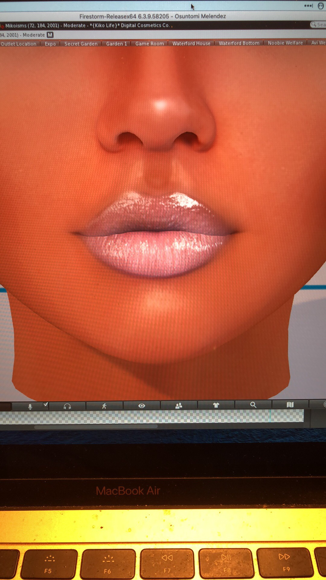 Lip 2 With Shine 2 and more shade